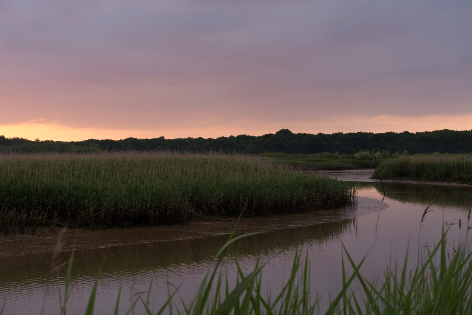 """Snape Maltings during the dawn chorus with Messiaen's """"Catalogue d'Oiseaux""""·PhotoSam Murray-Sutton"""